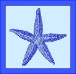 engraved starfish blue
